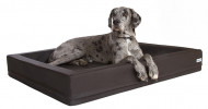 Orthopädische Hundebetten:  Hilfe bei Arthrose