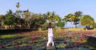 Yoga am Lotus Pond