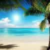 Mit Öko-Ausflügen von SeavisTours die Dominikanische Republik kennenlernen