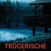 "Rezension : ""Trügerische Nähe"" – Susanne Kliem"