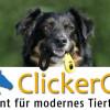 ClickerCon – Modernes Tiertraining mit positiver Verstärkung