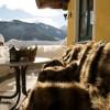 Easy-Skiurlaub für Familien am Bauernhofhotel in Saalbach