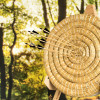 SCET Coaching erweitert Angebot um regeneratives, biophiles Bogenschießen im Wald