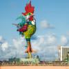 Karneval für Anfänger – Närrische Zeiten im brasilianischen Olinda und Recife