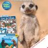 Dreiteiliges medizini-Sammelposter: Die tollsten Hunde / Im Februar startet der Sammelspaß für kleine medizini-Fans (FOTO)