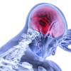 Mit Nahrungsergänzungsmitteln gegen die Multiple Sklerose (MS)