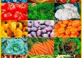 Vegetarische Ernährung und kohlenhydratarm