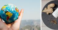 Gesund und fit im Urlaub:  Wissenschaftsbasierte Prävention von Reisekrankheiten