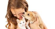 Hund, Katze, Mensch / Mit Betaisodona Bisswunden desinfizieren (FOTO)