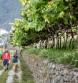 """""""Best Alpine"""" – wandelen in natuurpark Texelgroep"""