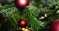 Unfälle bei Weihnachtsfeiern – Wie weit geht der Versicherungsschutz für Beschäftigte? (FOTO)