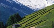Tux-Finkenberg im Herbst: Farbenprächtig bis gletscherweiß