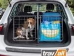 Urlaub mit Hund 2021: Das Auto auf Abenteuer nach dem Lockdown vorbereiten