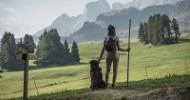 Wanderlust auf Europas größter Hochalm