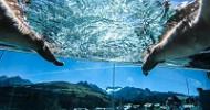 Monday at its best Urlaubs-Special im MY ALPENWELT Resort