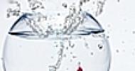 """Speed Headhunting: Bis der Bewerber Assistenzarzt Radiologie kommt dauert es """"nur"""" 7 Tage! Großer Erfolg für Personalberatung Krankenhaus Klinik"""