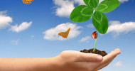 """""""Glückstraining"""" für einen erfolgreichen Start in den Frühling"""